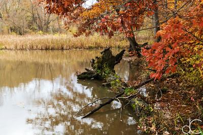 Hinckley Lake, Hinckley Reservation, November 2018.