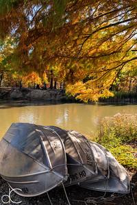 Rowboats, Cleveland Metroparks Hinckley Reservation, October 2019.