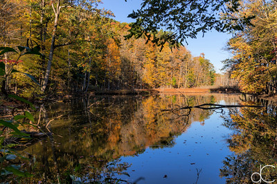 West Channel Pond, Cleveland Metroparks Rocky River Reservation, October 2015.