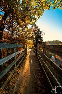 Fort Hill Trail, Cleveland Metroparks Rocky River Reservation, October 2015.