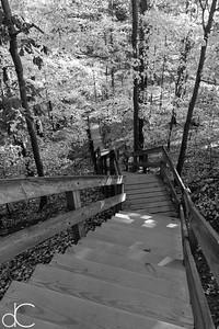 The Fort Hill Steps, Rocky River Reservation, October 2015.