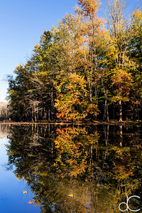 West Channel Pond, Cleveland Metroparks Rocky River Reservation, October 2015.