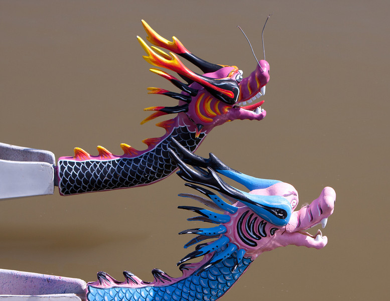 Close race between two of the dragons.