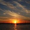 Sunset 7284 8x