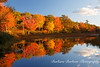 Reflections of  colorful trees along Beaver Pond in Acadia National Park