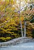 Stone walkway in Acadia