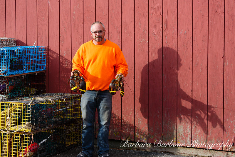 Lobster fisherman, Bass Harbor, Maine