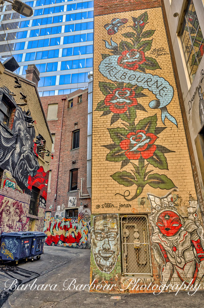 Lanes and Alleys  in Melbourne