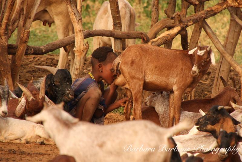 Hamar boy drinking goat milk