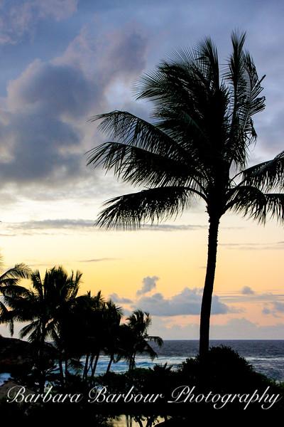 Sunrise in Kaua'i