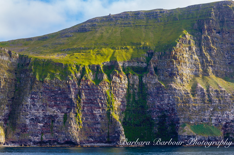 Latrabjarg Cliffs, Western Coast of Iceland