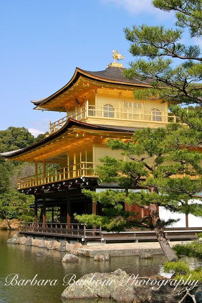 Golden Pavilion, vertical