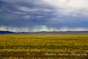 Rain Storm in Gobi Desert, Mongolia