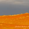 sand dunes of Sossusvlei at dawn