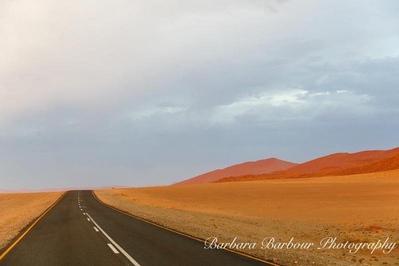 Along the road in Sossusvlei