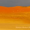 Oryx in the Sand dunes of Sossusvlei