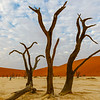 Deadvlei in Namib-Nauukluff National Park, Sossusvlei