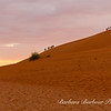 """Climbers on """"Big Daddy"""" at Deadvlei in Namib-Nauukluff National Park, Sossusvlei"""