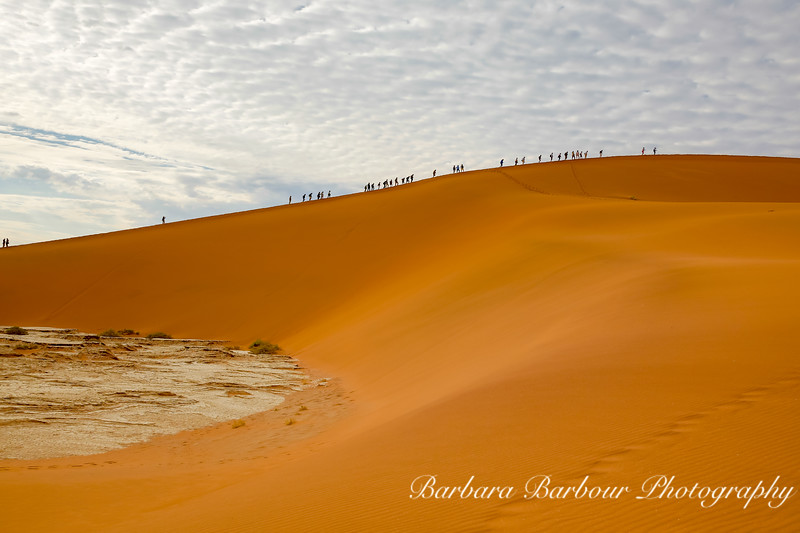 "climbers on 'Big Daddy"" at  Deadvlei in Namib-Nauukluff National Park, Sossusvlei"