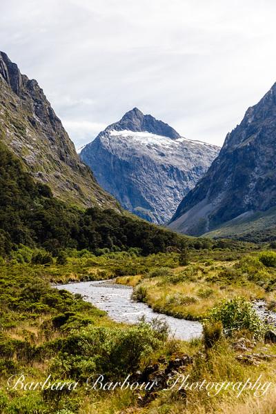 Landscape, South Island, New Zealand
