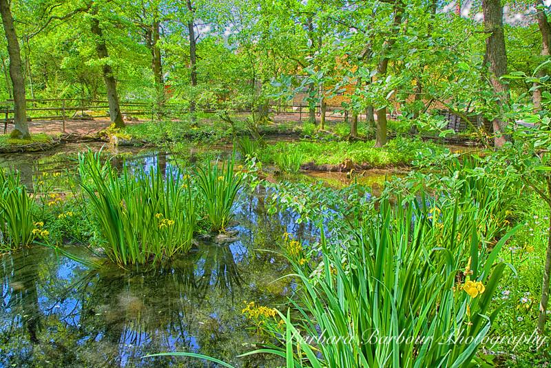 Pond in Skansen Open Air Museum, Stockholm, Sweden