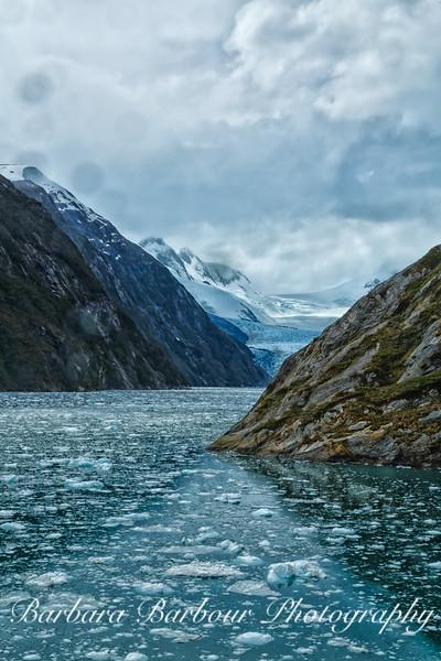 Garibaldi Fjord, Patagonia, Chile