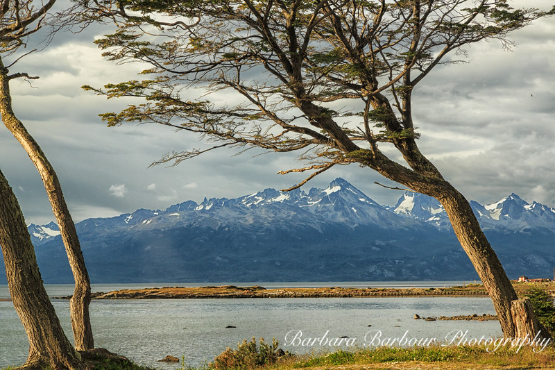 End of the Andes Mountains in Ushuaia, Argentina
