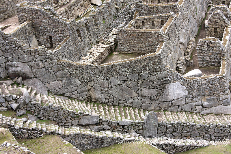 Steps, Stones and Stairs, Machu Picchu