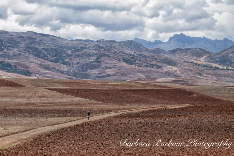 Bicycling along a road in the Andes Mountains in Peru