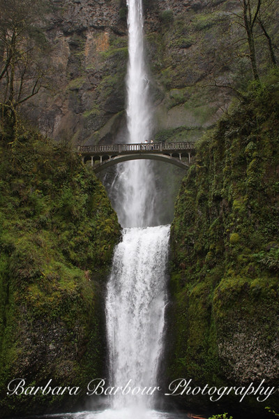 Benson foot bridge and Multinomah Falls, in the Columbia River Gorge, Oregon