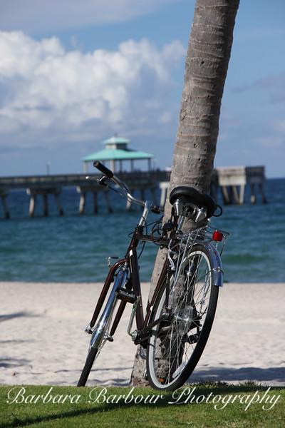Bicycle at Deerfield Beach, Florida