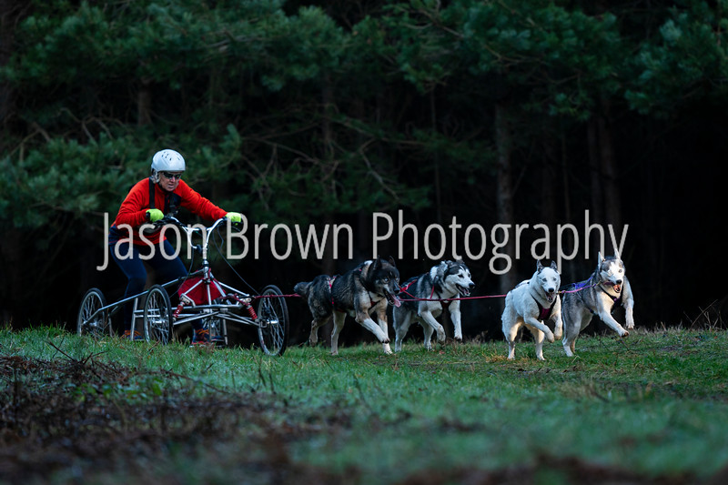 Jason Brown Photography