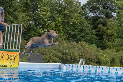 1509_Dock Diving_026
