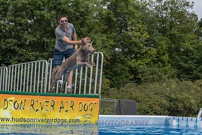 1509_Dock Diving_020