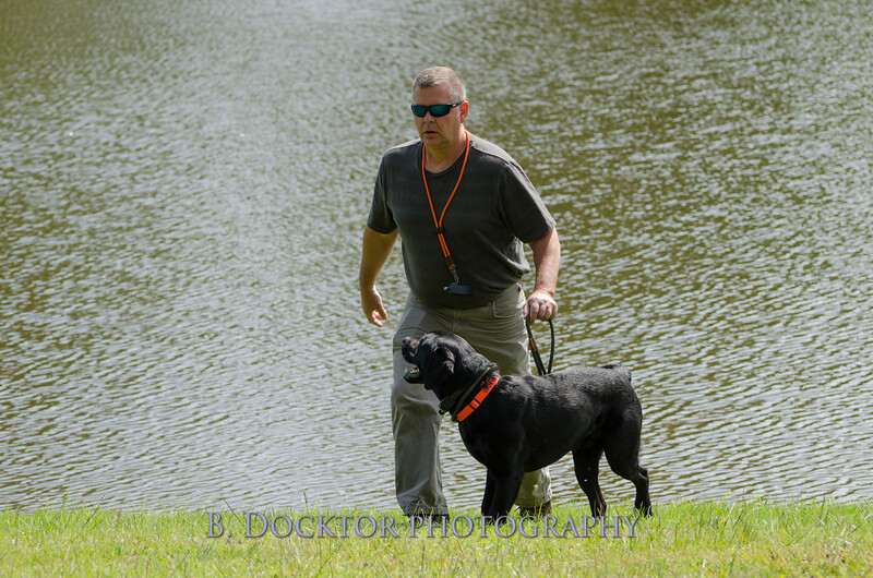 1308_SITFFR dog day_073