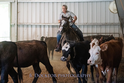 1906_Cattle Sorting at Cowgirl Up Ranch_014