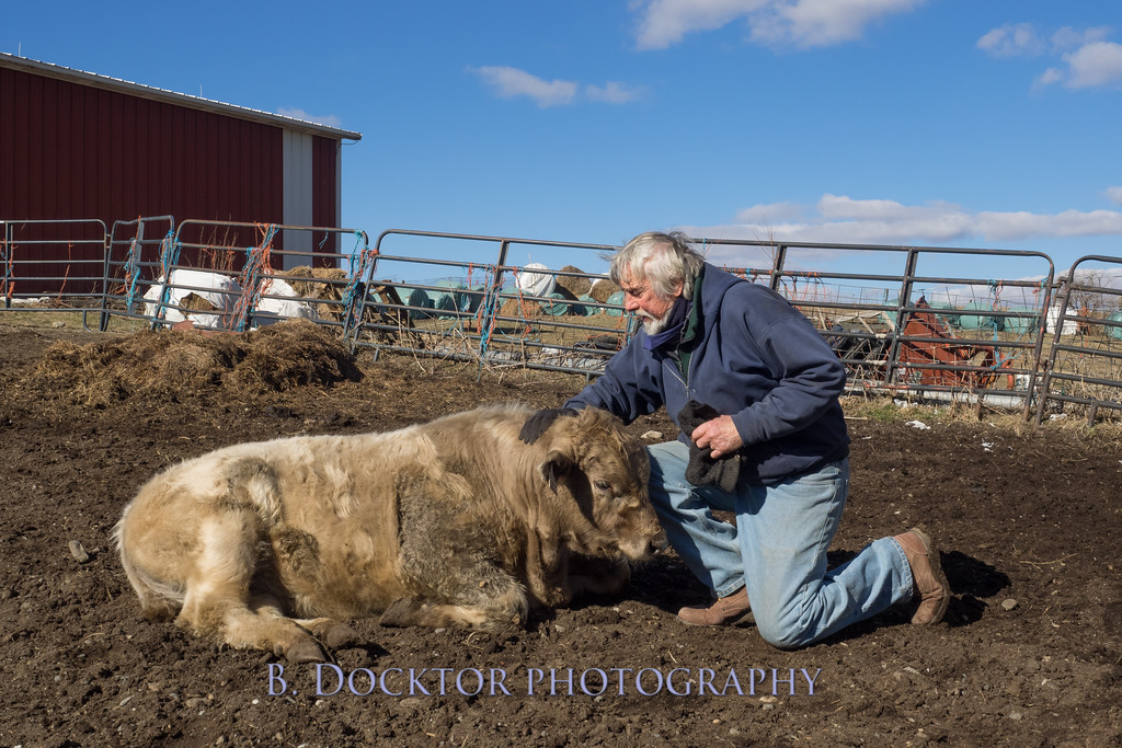 1602_Fox Hill Farm_028