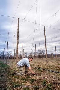 Hudson Valley Hops & Grains-2