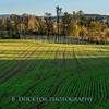 Hudson Valley Hops & Grains fall 2017-15