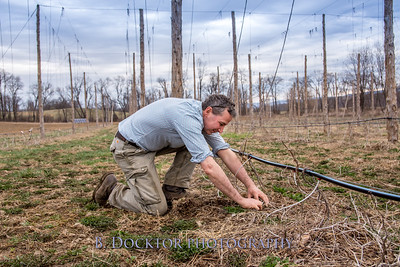 Hudson Valley Hops & Grains-1