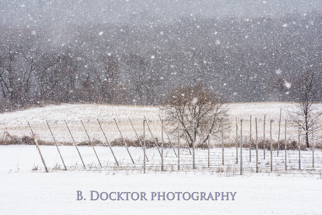 1802_Hudson Valley Hops & Grains in snow_003