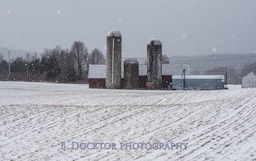 1802_Hudson Valley Hops & Grains in snow_002