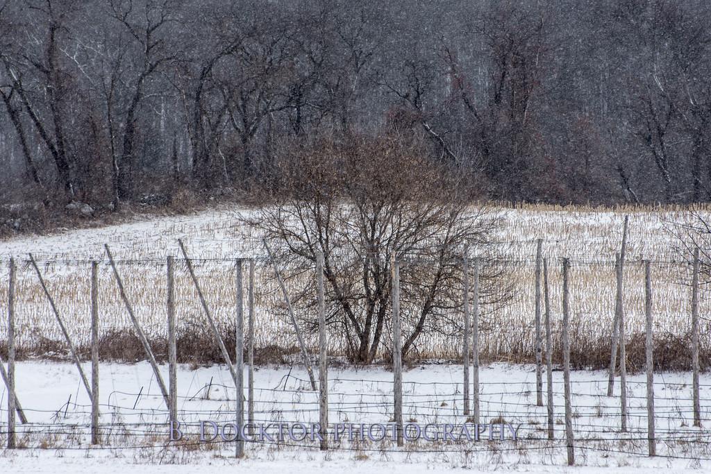 1802_Hudson Valley Hops & Grains in snow_014