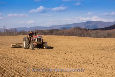 Hudson Valley Hops & Grains-12