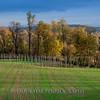 Hudson Valley Hops & Grains fall 2017-19