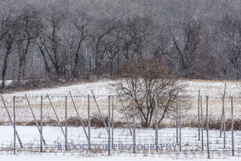 1802_Hudson Valley Hops & Grains in snow_013
