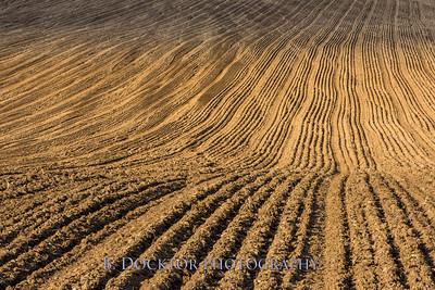 Hudson Valley Hops & Grains-24