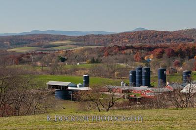 Millerhurst Farm-76