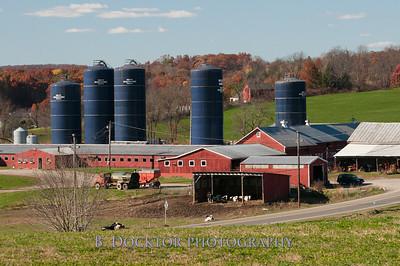 Millerhurst Farm-105