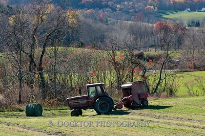 Millerhurst Farm-69